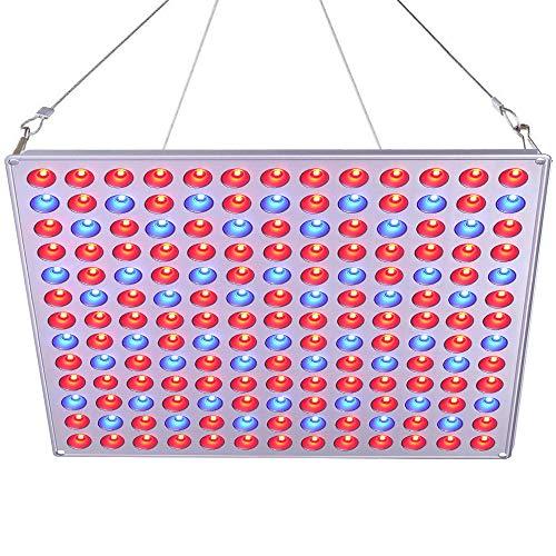Roleadro LED Pflanzenlampe Winter 75w Pflanzenlicht Led Grow Lampe mit Rot Blau Licht fur Pflanzen Wachstum im Gewächshaus