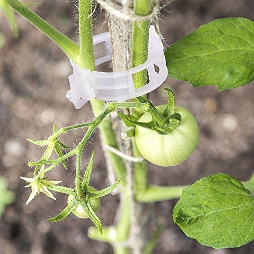 100 Stk Weiß Kunststoff Pflanzen Clips Pflanzenklammern Rebe Clips für Gemüse Tomate Pflanze Unterstützung