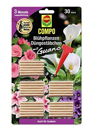 COMPO Blühpflanzen Düngestäbchen mit Guano, 3 Monate Langzeitwirkung, 30 Stück
