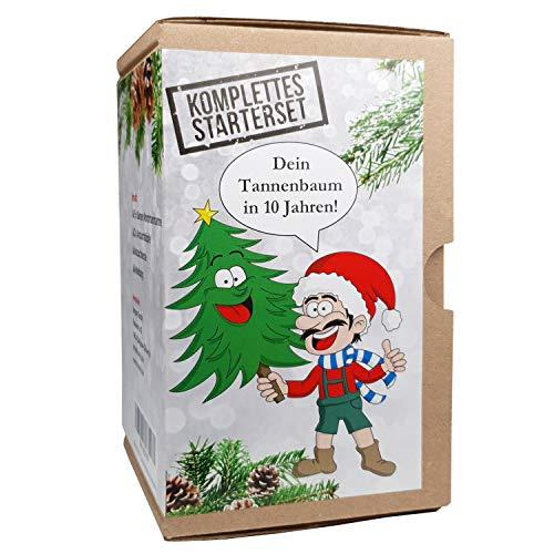 KRONLY Wichtelgeschenk Tannenbaum Anzuchtset Weihnachtsbaum - Nikolausgeschenk witzige Geschenkidee Adventskalender Füllung - Julklapp Geschenk Stocking fillers Merry Christmas