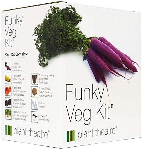 """Plant Theatre """"Funky Veg"""" Saatgut-Kit - Anzuchtset mit Samen für 5 alte Gemüsesorten - Mit Karotten-, Zucchini-, Rosenkohl-, Mangold- und Tomatensamen"""