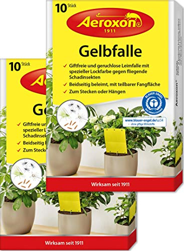 Aeroxon – Gelbfalle, Gelbtafeln, 40 kleine Gelbsticker, 20 große teilbare Leimtafeln, perfekt gegen Ungeziefer, Zuhause und auf dem Balkon, Gegen Trauermücken, Blattläuse, Thripse, weiße Fliegen